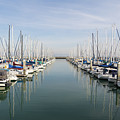 Sailboats At South Beach Harbor San Francisco Dsc5767 by Wingsdomain Art and Photography