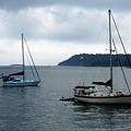 Sailboats In Bar Harbor by Linda Sannuti