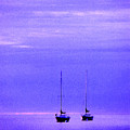 Sailboats In Blue by Timothy Johnson