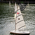 Sailboats In Central Park by Madeline Ellis