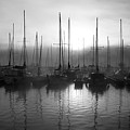 Sailboats In Harbor 1 by Kevin Mitts