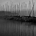 Sailboats In Harbor 2 by Kevin Mitts