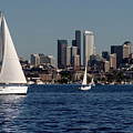 Sailboats In Seattle by Carl Purcell