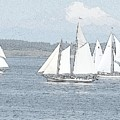 Sailboats In Sketch by Barbara Henry