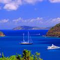 Sailboats In St. John's by Gary Wonning