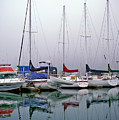 Sailboats In The Fog by Robert Potts