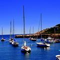 Sailboats by John Kenealy