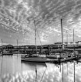 Sailer's Delight Black And White by JC Findley