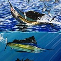 Sailfish In Costa Rica by Minamoto Yoshida