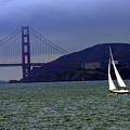 Sailing And The Golden Gate  by David Salter