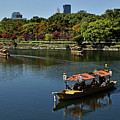 Sailing Around Osaka Castle by Carlos Alkmin
