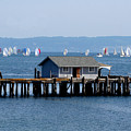 Sailing At Penn Cove by Mary Gaines