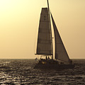 Sailing Before Sunset by Jeremy Hayden