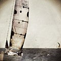 Sailing Boat Nautical 5 by Jean Francois Gil
