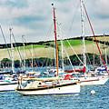 Sailing Boats by Ed James