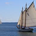 Sailing Downeast by Doug Mills