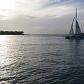 Sailing by Eline Van Nes
