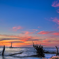 Sailing Hazard by Marvin Spates