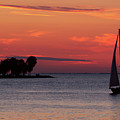 Sailing Home by Joel Witmeyer