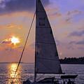 Sailing Home Sunset In Key West by Bob Slitzan