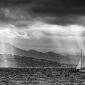 Sailing In Black And White by Laura Macky