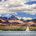 Sailing In Havasu by James Eddy