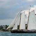 Sailing In Key West At Dusk by Bob Slitzan