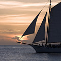 Sailing In Key West At Sunset by Christopher Purcell
