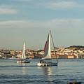 Sailing In Lisbon Portugal by Georgia Mizuleva