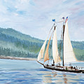 Sailing Into Castine Harbor by Stella Sherman