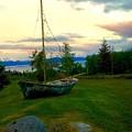 Sailing  by Jacque Lenew