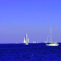 Sailing by Judy  Waller
