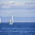 Sailing by Kellie Prowse