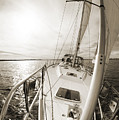 Sailing On A Beneteau 49 Sailboat by Dustin K Ryan