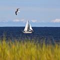 Sailing On Long Beach Island by Jeff Breiman