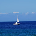 Sailing On The Blue Ocean by Pamela Walton