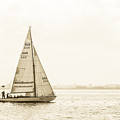 Sailing On The River Neva by Clare Bambers
