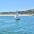 Sailing Out Of The Harbor by Joe Lach