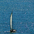 Sailing Solo by Sue Melvin