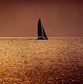 Sailing by Steven Sparks
