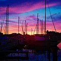 Sailors Delight by Charles J Pfohl