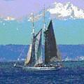 Sailors Delight by Tim Allen