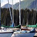 Sails Of Seldovia by Lori Mahaffey