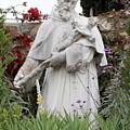 Saint Francis Statue In Carmel Mission Garden by Carol Groenen