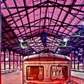 Saint Lazare Station by Jean-luc Bohin