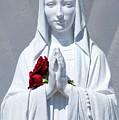 Saint Virgin Mary Statue #1 by Julian Starks