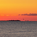 Sakonnet Point Sunrise And Lighthouse by Bill Cannon