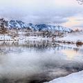 Salem Lake Winter Wall Decor by David Millenheft