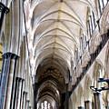 Salisbury Cathedral by Amanda Barcon