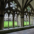 Salisbury Cathedral Cloisters by Phyllis Taylor